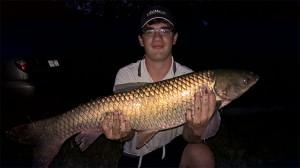 Amur 6.1 kg