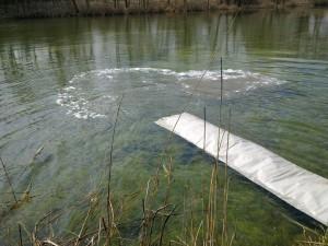 Telepítés a II. (hínaras) tóba